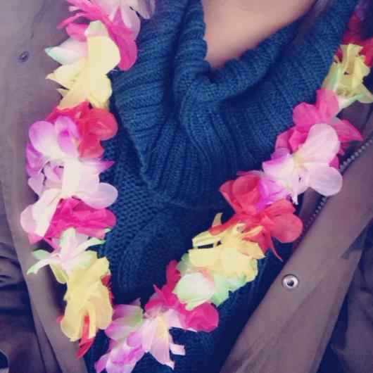 nuts_okinawashu05.png