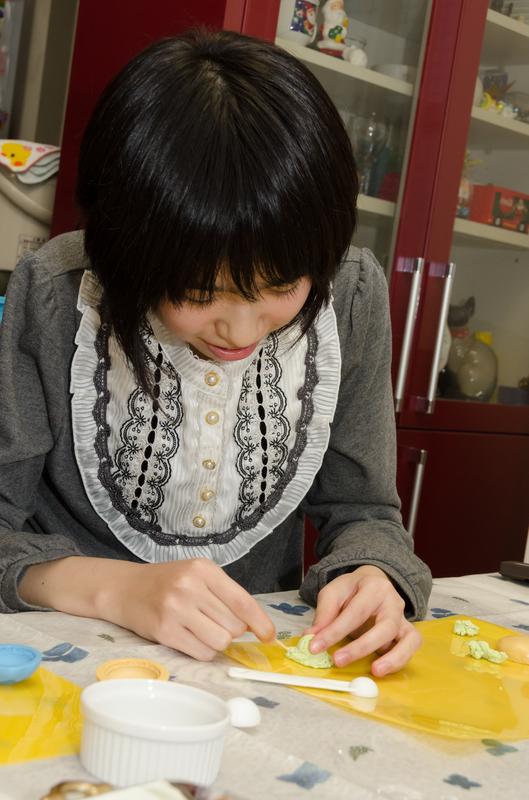 hiyashihiyoko_sweetsdeco (19).jpg